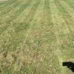 vertikutace trávníku